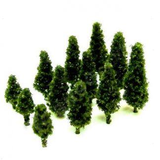 Dark Green Poplar Tree